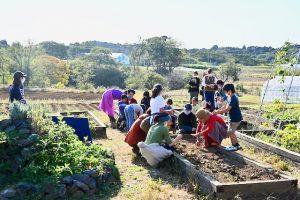 [オンラインゼミ] 2月28日 (日)__子どもが学べる地域の菜園を学校に!__~エディブル・スクールヤードの挑戦